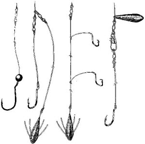 Surfcasting - rigs, tips and techniques - The Fishing Website