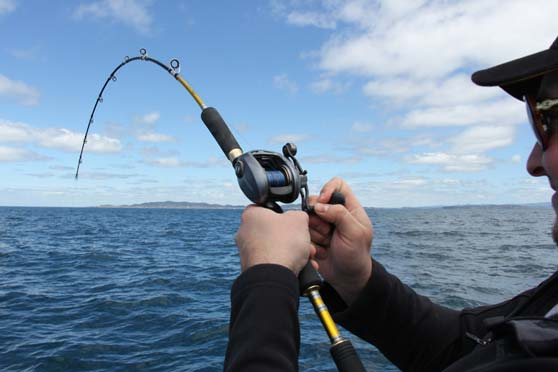 Capt 39 n hook 39 s fishing guide the fishing website for Fish n hook