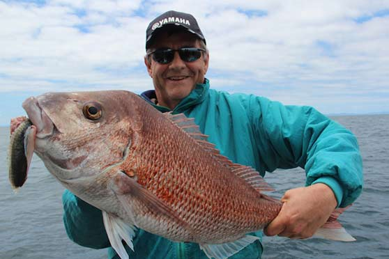 how to catch snapper the fishing website