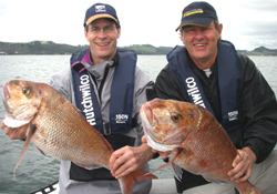 These snapper were caught by the A team in the annual Golden Rod competition....