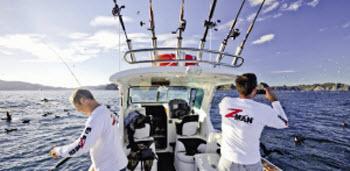 Fishing work ups in the hauraki gulf the fishing website for Fishing bite times