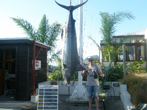 161.7kg blue marlin, Awsome condition fish fight time 35mins
