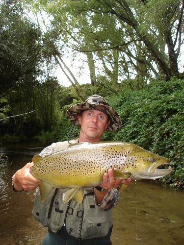 One of twenty odd double figure browns for the 07/08 summer seasons guiding