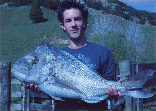 23lb snapper caught on softbait, landbase fishing