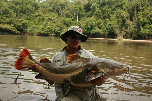 100lb red tail catfish fishing the back blocks of the amazon