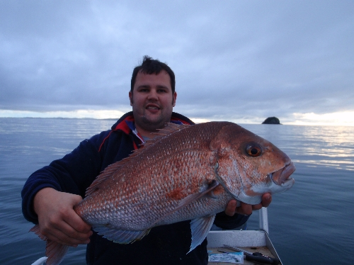 caught on soft bait in 8m of water