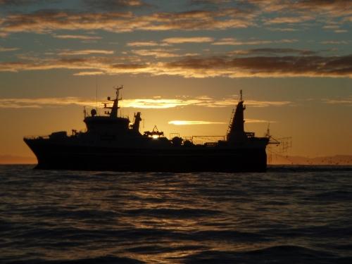 "NZ Fishing trawler ""REHUA"" fishing of the West Coast"
