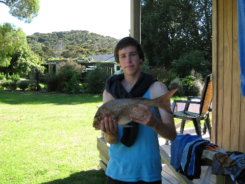 caught this 5 pounder of ROCKS i couldent belive it