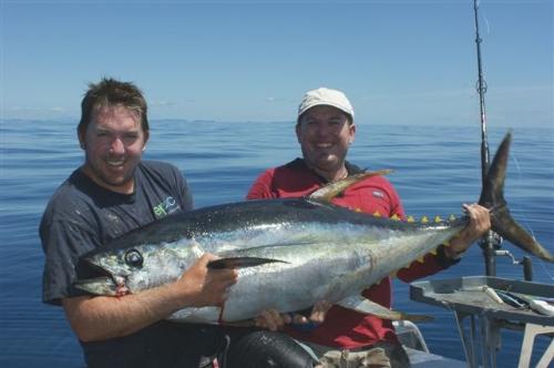Epic Adventures 45kg yellowfin