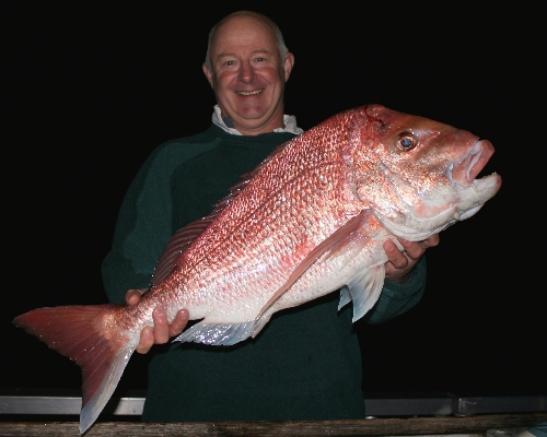 After sunset snapper from DIVERSITY