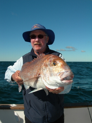 Razzor and a SP snapper from DIVERSITY