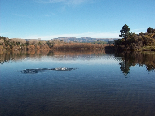 Good day at the lake