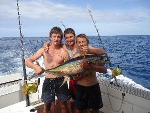 15kg yellowfin
