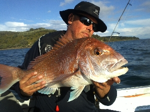 Mikes 660 mm snapper on softbait just before reless ;)
