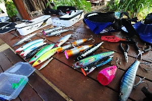 The lures