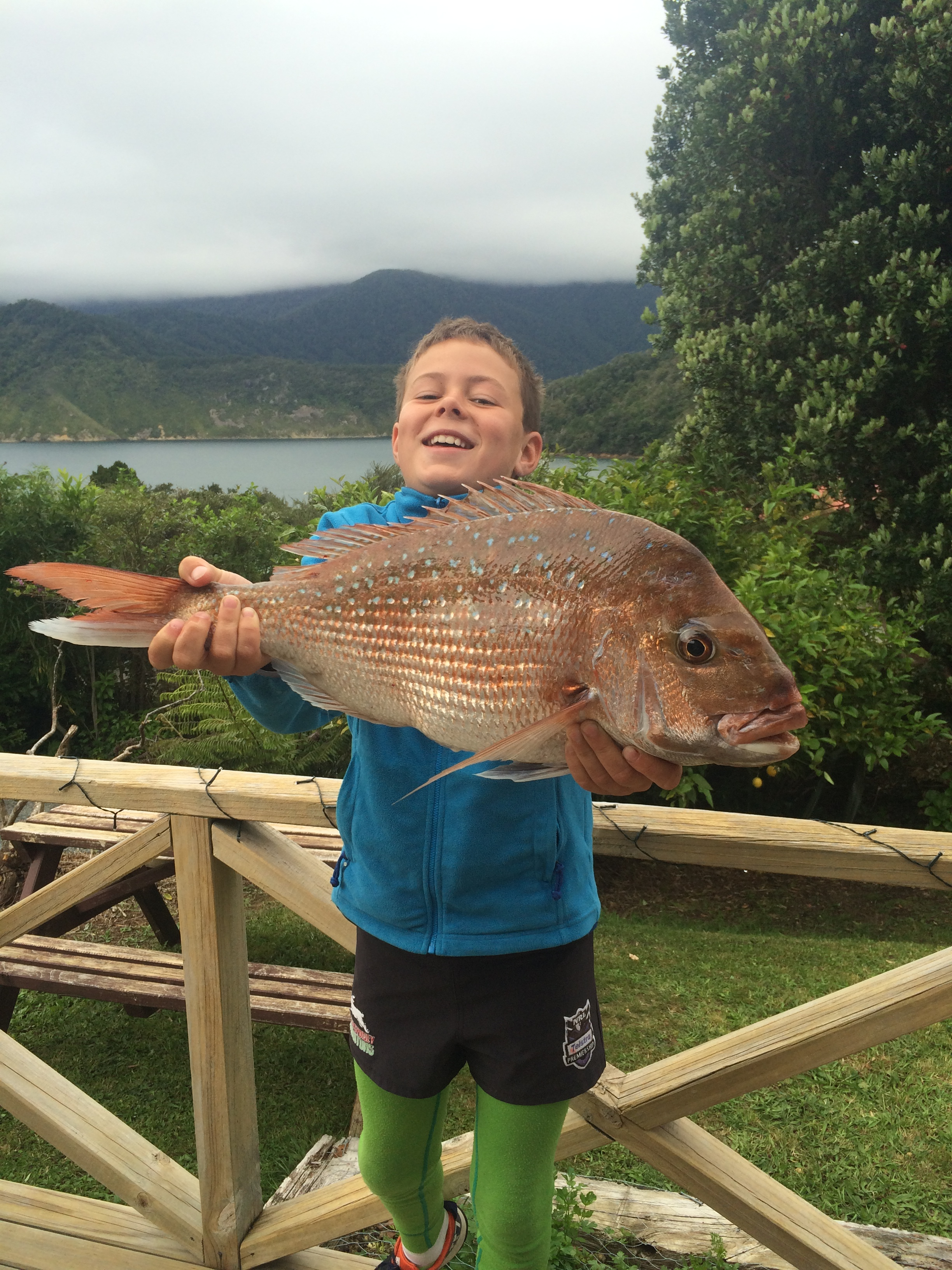 Angus Robertson's first snapper for the summer