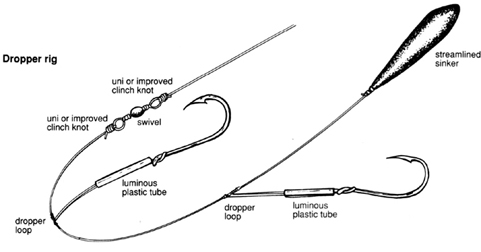 Dropper or ledger rig the fishing website for Fishing pole setup beginners