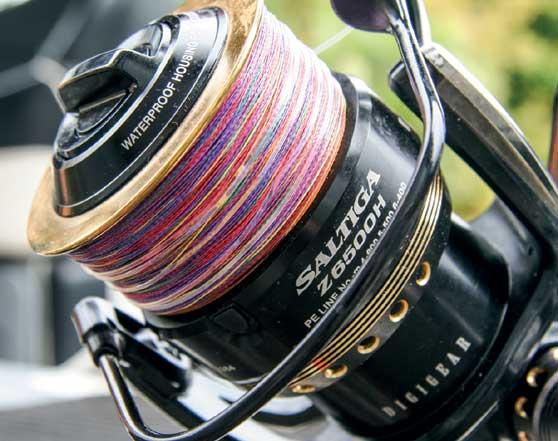 Reel advice - Drag settings - The Fishing Website