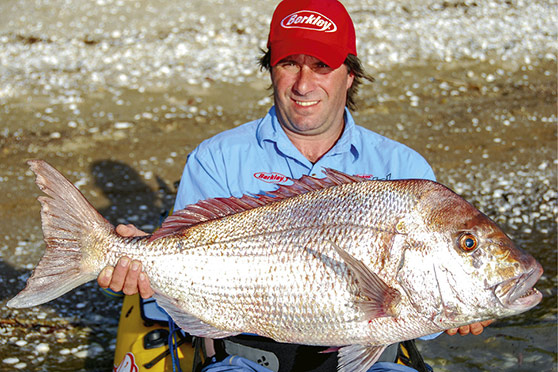 Rob's first trophy soft-bait caught snapper, taken 12 years ago on a light jighead in six metres of water.