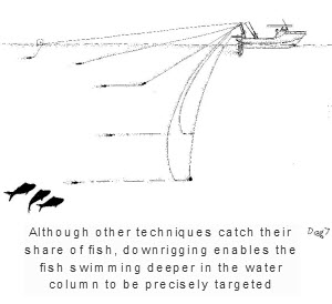 Downrigging for kingfish the fishing website for How to troll for fish