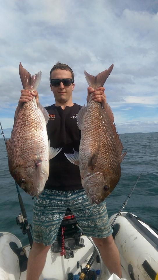 Kawau Fish
