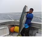 The winning Kingfish for the Bay Bonanza