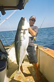 Dale Wilkins' monster 37.6kg Kingi - previously tagged six years ago!