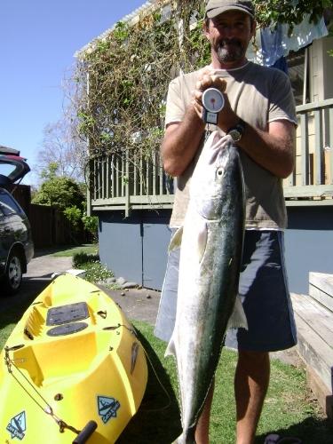12kg kingi on softbait from kayak