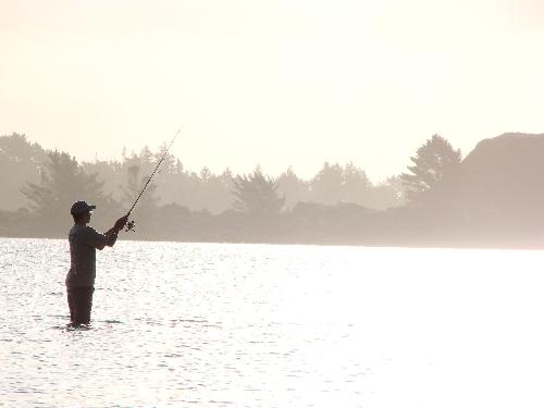 Kai iwi sparkling silhouette