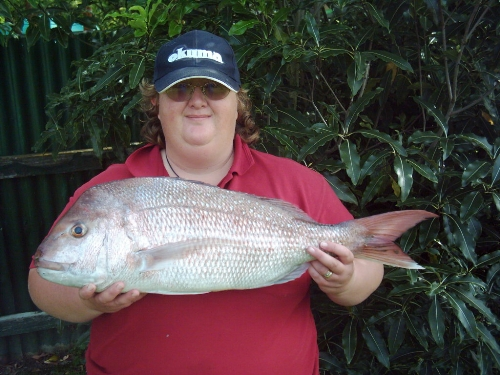 My heaviest Snapper 4.22kg caught while surfcasting