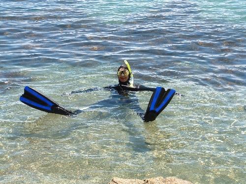 Abundant sealife just a few metres off shore