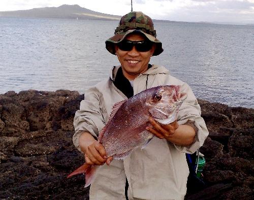 50cm snap off the rocks