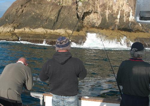 Wash fishing on DIVERSITY