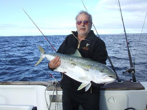 North Cape Kingfish