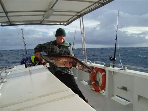 my nice gemfish what a tasty smoked fish :)