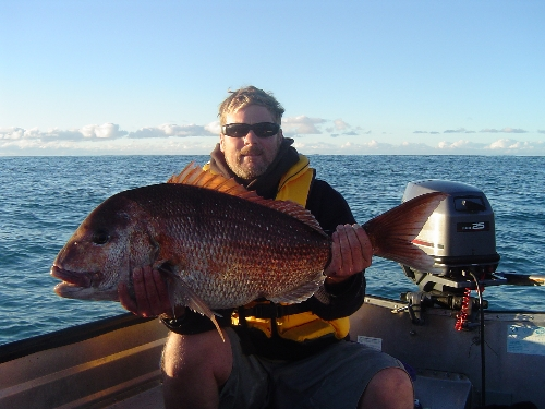 30lb's of east coast red
