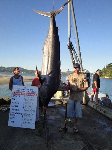 293.8kg Blue Marlin
