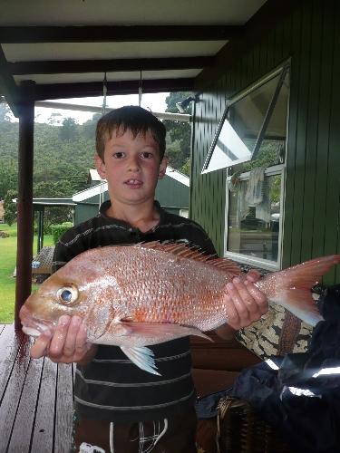 Sanpper - a great catch !
