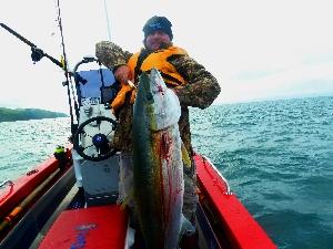 50pound KingFish