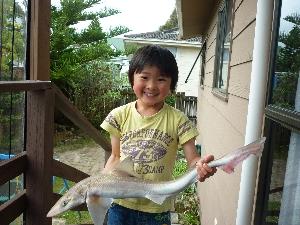 5yr old boy with 80cm rig shark