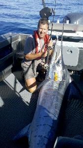 128kg stripped marlin on snapper rod